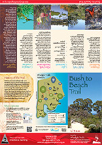 Bush to Beach Brochure
